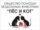 Проблема бездомных кошек и собак существует в каждом городе и наш город не